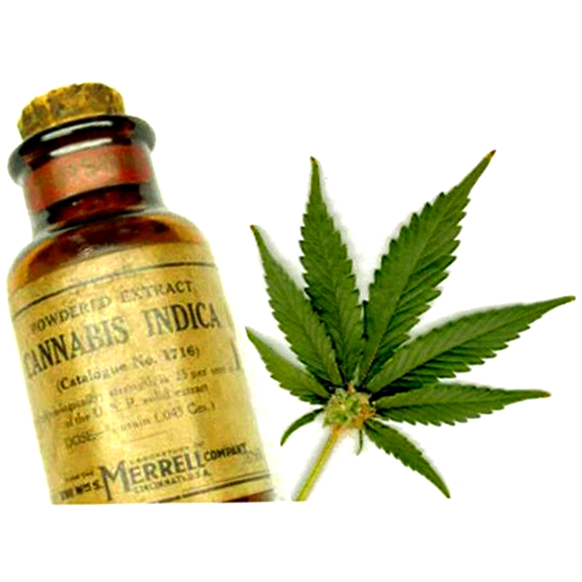 Early-1900s vial of commercial cannabis powder